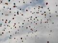 50. Geburtstag ALS  (125).jpeg
